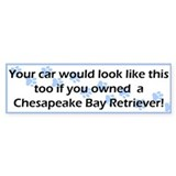Your Car Chesapeake Bay Retriever Bumper Car Sticker