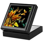 Butterfly Gardens Gift and Jewelry Box