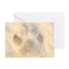Ice Paw Greeting Cards (Pk of 20)