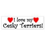 I Love My Cesky Terriers Bumper Bumper Sticker