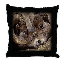 Big Horn Sheep Throw Pillow
