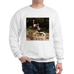 Two Turkeys on a Log Sweatshirt