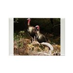 Two Turkeys on a Log Rectangle Magnet (100 pack)