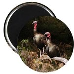 Two Turkeys on a Log Magnet
