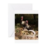 Two Turkeys on a Log Greeting Card