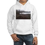 Wier Wood Resevoir Hooded Sweatshirt