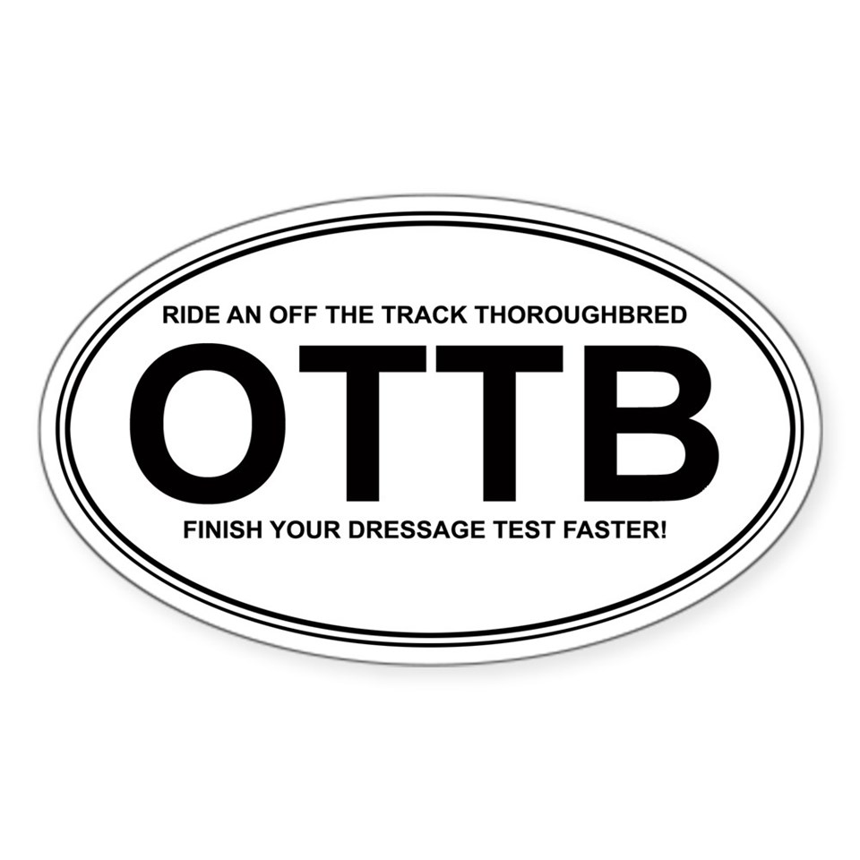 Dressage quotes stickers car bumper stickers decals