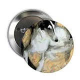 "Cute Shayna 2.25"" Button (100 pack)"