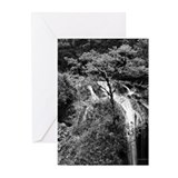 """Waterfall & Tree"" Greeting Cards (Pk of 10)"