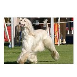 Cool Afghan hound Postcards (Package of 8)