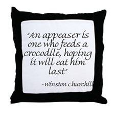 Cool Winston Throw Pillow