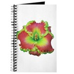 Pink w/ Green Edge Daylily Journal