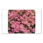 Coreopsis Rose Rectangle Sticker