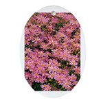 Coreopsis Rose Oval Ornament