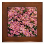 Coreopsis Rose Framed Tile