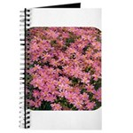 Coreopsis Rose Journal