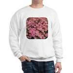 Coreopsis Rose Sweatshirt