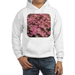 Coreopsis Rose Hooded Sweatshirt