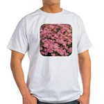 Coreopsis Rose Light T-Shirt