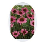 Echinacea Magnus Oval Ornament