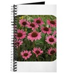 Echinacea Magnus Journal