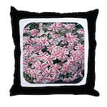 Phlox Candy Stripe Throw Pillow