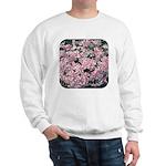 Phlox Candy Stripe Sweatshirt