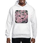 Phlox Candy Stripe Hooded Sweatshirt