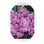 Phlox Lilac Oval Ornament