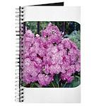 Phlox Lilac Journal
