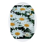 Shasta Daisies Oval Ornament