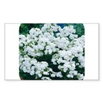 Phlox White Rectangle Sticker