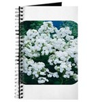 Phlox White Journal