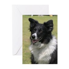 Cool Border collie Greeting Cards (Pk of 10)