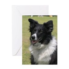 Unique Border collie puppy Greeting Card