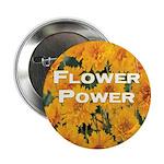 Coreopsis Flower Power 2.25