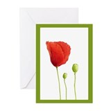 Red Poppy Green Greeting Cards (Pk of 20)