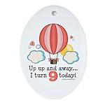 Ninth 9th Birthday Hot Air Balloon Oval Ornament