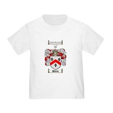 Walsh Coat of Arms T