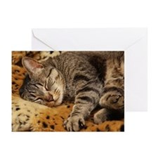 Sleeping Bud Greeting Cards (Pk of 10)
