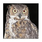 Great Horned Owl Tile Coaster