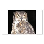 Great Horned Owl Rectangle Sticker