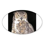 Great Horned Owl Oval Sticker