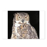 Great Horned Owl Postcards (Package of 8)