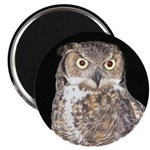 Great Horned Owl Magnet