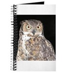 Great Horned Owl Journal