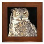 Great Horned Owl Framed Tile