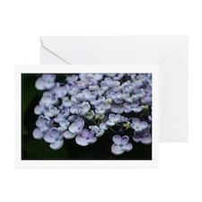 Hydrangea Petals Greeting Cards (Pk of 10)