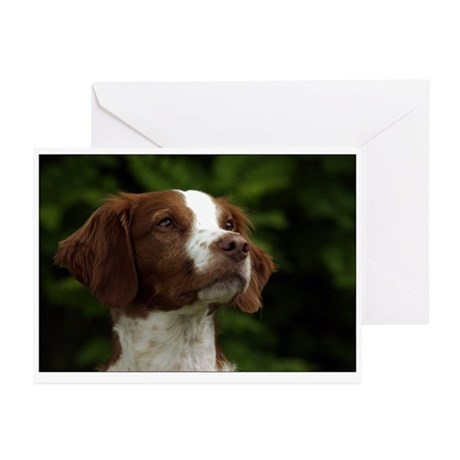 Brittany Greeting Cards