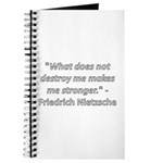 What does not destroy me Journal
